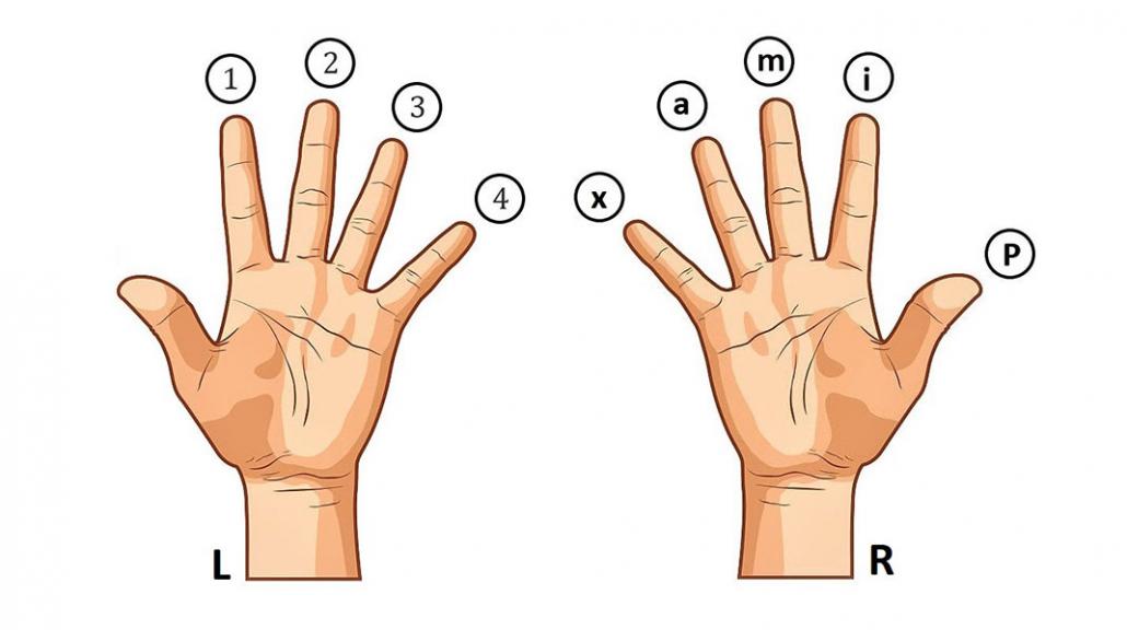 ترتیب و نام انگشتان دست در گیتار
